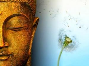 Impermanence (anitya) | Definition