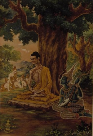 Ascetic Practices and Buddhism