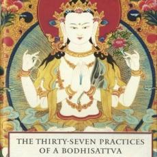 37 Bodhisattva Practices