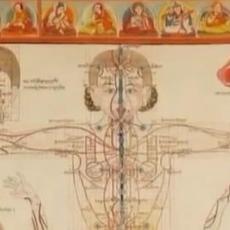 Basics of Tibetan Medicine