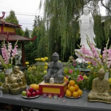 Merit and Merit-Making in Buddhism