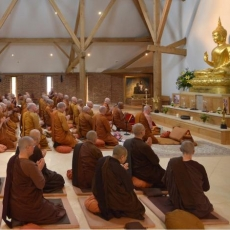 Monasticism in Buddhism