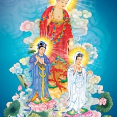 Pure Land Buddhism | Overview