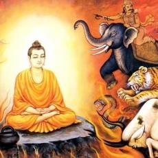 Dīgha Nikāya | Long Discourses of Buddha