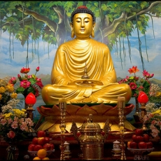 Buddha: From Birth to Enlightenment