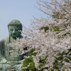 Jōdo Wasan | by Shinran